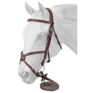 English Halters/Bridles